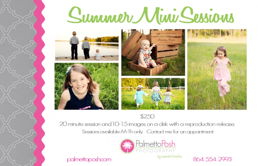 summer mini session