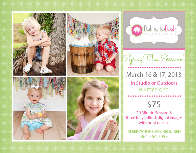 details of spring mini sessions
