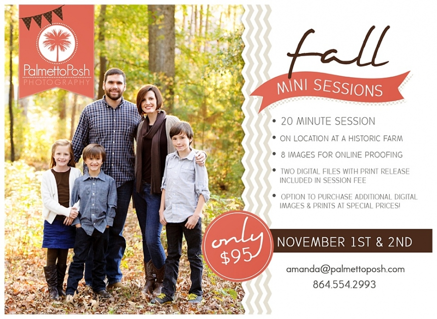 family mini sessions | palmetto posh photography greenwood, sc