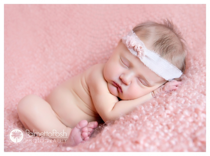 newborn photographer amanda breeden, palmetto posh photography