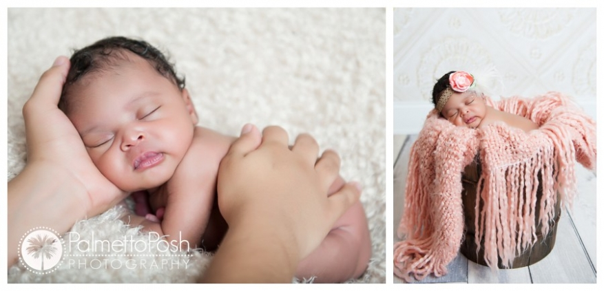 newborn photographer | palmetto posh photography
