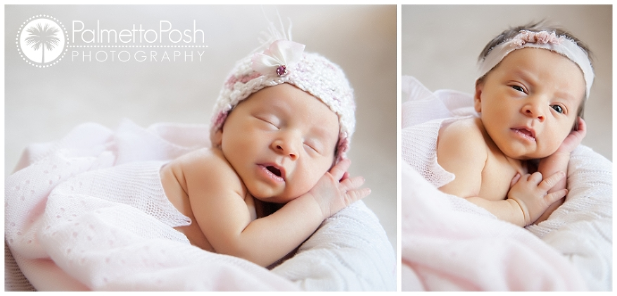 newborn photographer greenwood, sc | palmetto posh photography